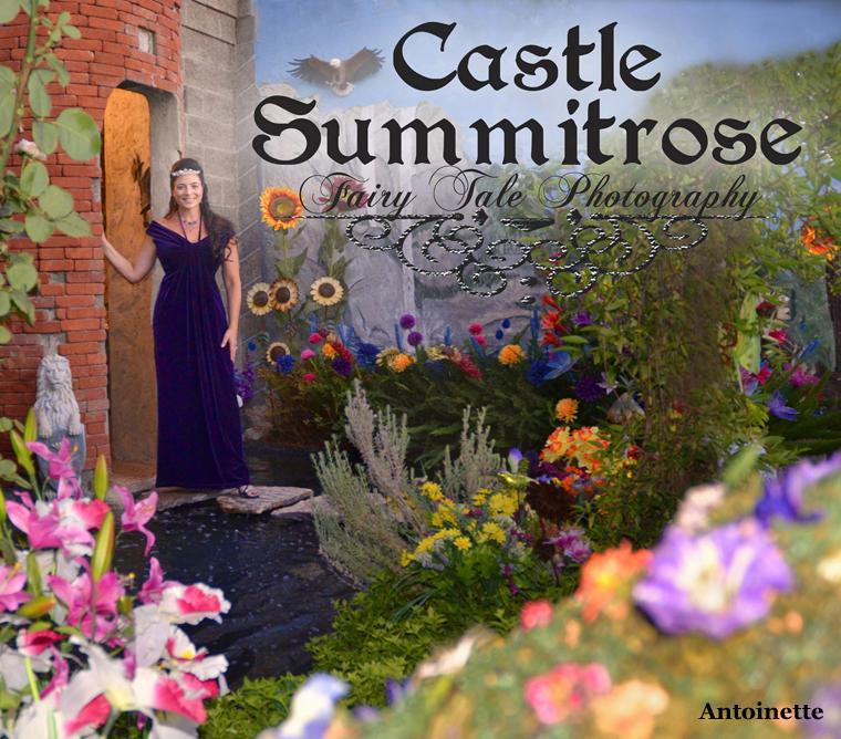 Castle Summit Rose